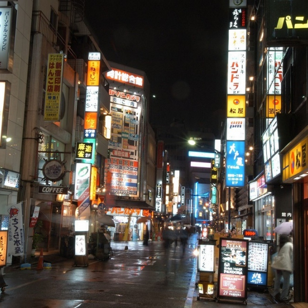 que hacer en Japón - EXCURSIONES DESDE TOKYO