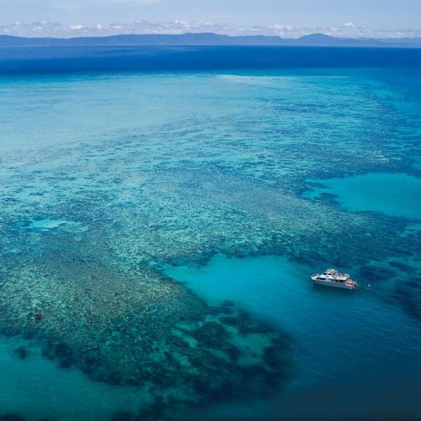 EXCURSIONES EN CAIRNS - Upolu Cay