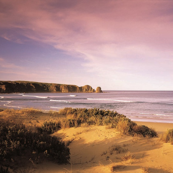 EXCURSIONES EN MELBOURNE - Phillip Island