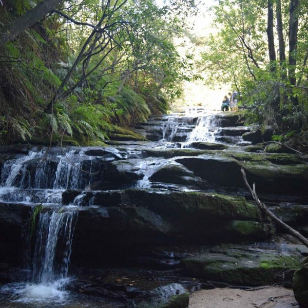 EXCURSIONES EN SYDNEY - Blue Mountains & Scenic World