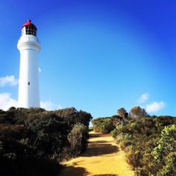 EXCURSIONES EN MELBOURNE - Great Ocean Road