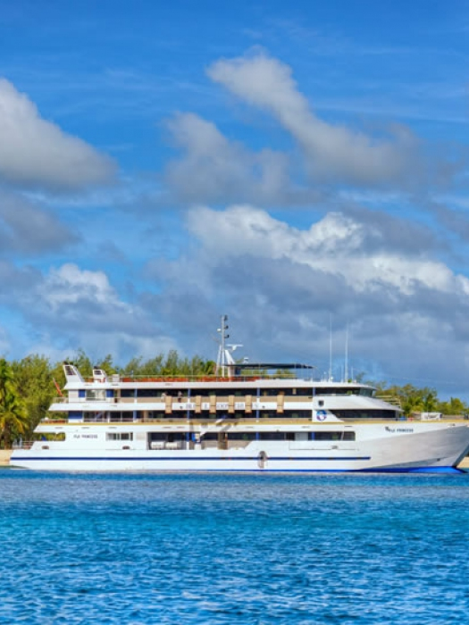 Cruceros en Fiji