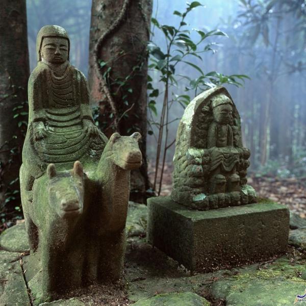 Descubre Japón - Takahara