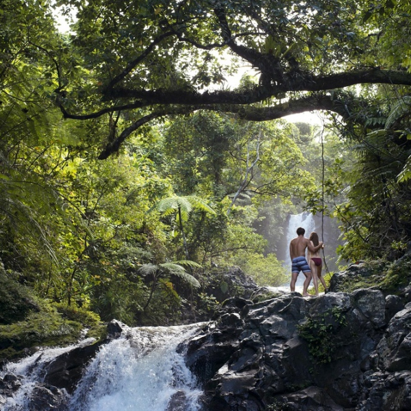 Descubre Fiji - Taveuni y Northern Islands