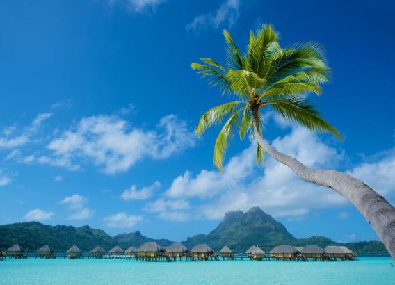 Hoteles en Polinesia - Bora Bora Pearl Beach Resort & Spa