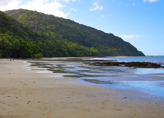 Hoteles en Australia - Cape Tribulation Beach House
