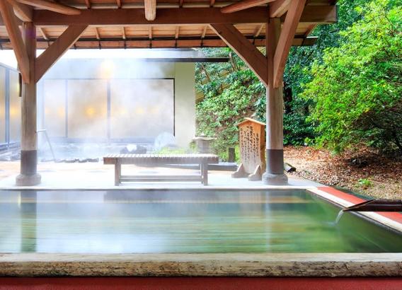 Hoteles en Japón - Yumoto Fujiya Hotel