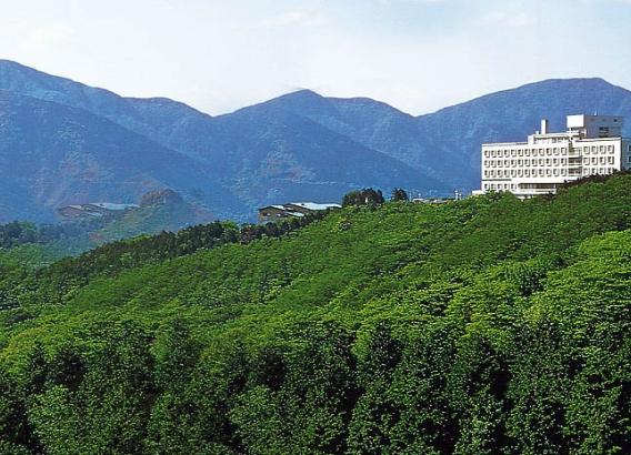 Hoteles en Japón - Palace Hotel Hakone