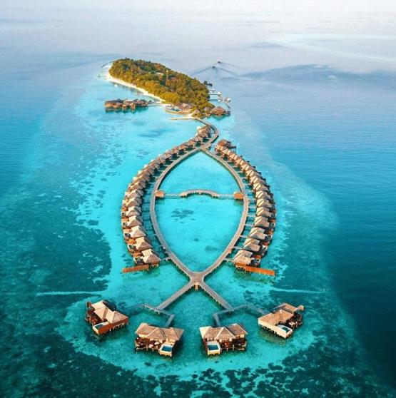 HOTEL LILY BEACH