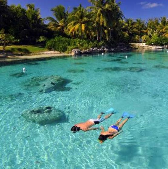 Viajar a Polinesia - SOCIEDAD Y TIKEHAU