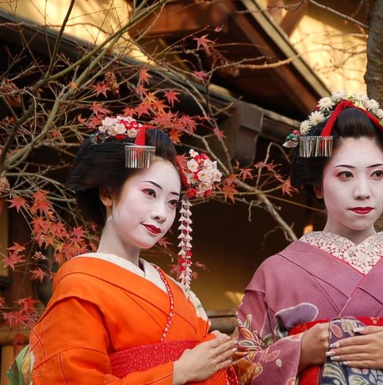 NUESTROS VIAJES A JAPÓN - JAPÓN IMPERIAL