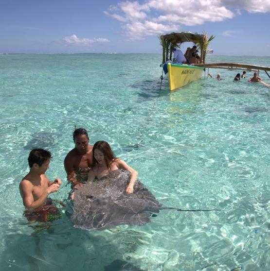Viajar a Polinesia - POLINESIA  HOTELES PEARL