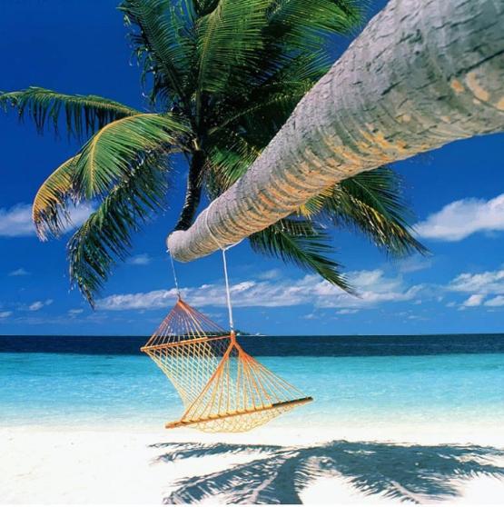 Viaje a Polinesia -   CUATRO ISLAS